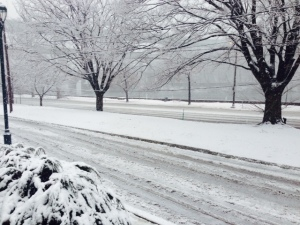 A winter storm has blanketed many areas surrounding The Lincoln University.  A view from a snow covered Kelly Drive in Philadelphia.